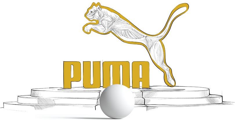 Analiza logo Pumy