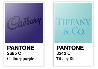 Kolory niebieski i fioletowy w logo